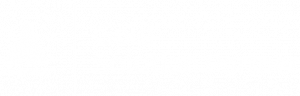 Gold Solution Partner-Logo